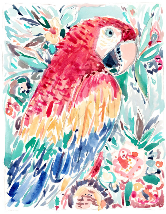 DONROY the Scarlet Macaw
