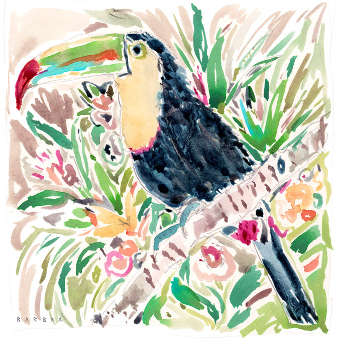562_Pepper_the_Toucan_web
